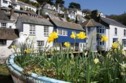 Cornish Traditional Cottages, Newquay, Cornwall