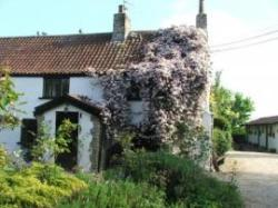 Fern Cottage Bed & Breakfast, Emersons Green, Bristol