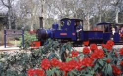 Exbury Gardens & Steam Railway, Southampton, Hampshire