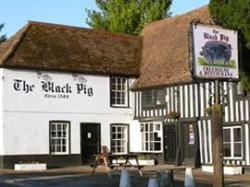 Black Pig, Staple, Kent