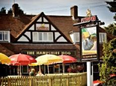 The Hampshire Hog