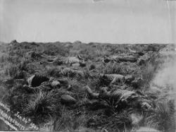 Battle of Spion Kop