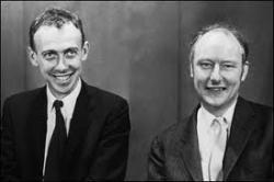 Crick and Watson discover DNA