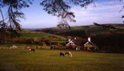 Coombe Farm Guest House